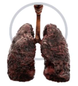 Deep Inhale - rezultati - nezeljeni efekti